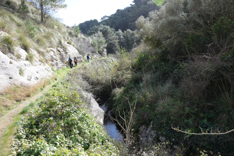 Trekking per canyon